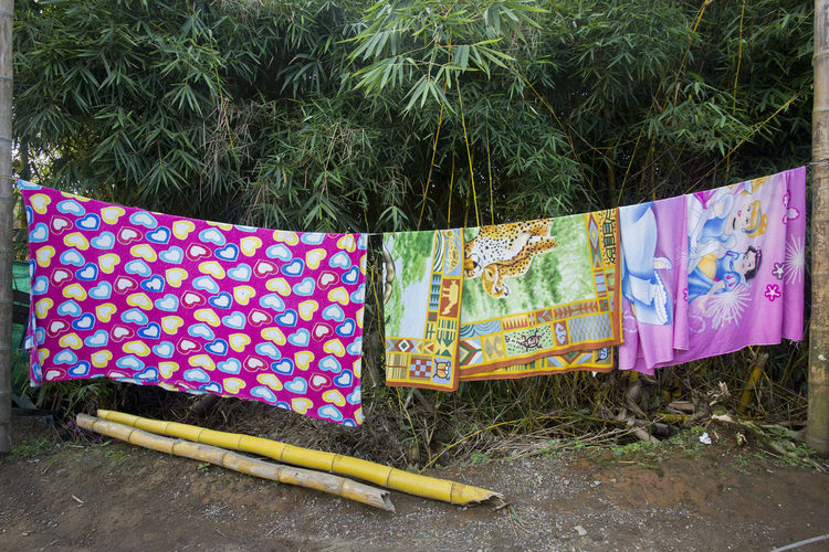 In 2017 I stayed with a small family circus in the interior of Colombia #circuslife #Colombia #Colombian #circus #colors #details #magical #ordinary #patterns #rurallife #ruralscene #still Life Colombia Everyday Life Colombia Es Bella Colombia ♥
