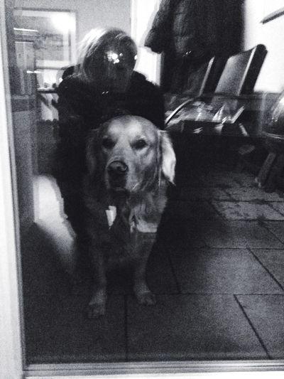 Lilly Monochrome Blackandwhite My Dog