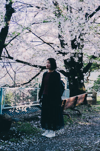 Full length of young woman standing by cherry tree