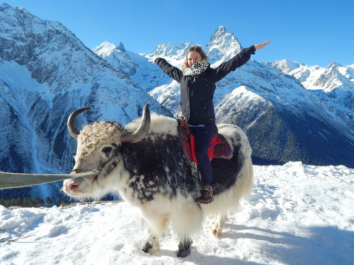 Smiling woman sitting on buffalo against snowcapped mountains