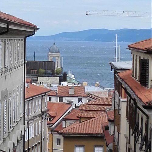 Vista mare,agitato dalla Bora Triestemonamour Trieste Triesteraccontatrieste Istanitalia Istantrieste Igersts Igersitalia Vivotrieste Loves_friuliveneziagiulia Myts Comuneditrieste