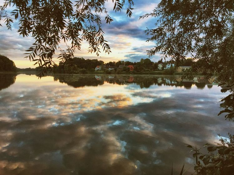mirror Tree Reflection Water Sunrise Morning Light Morning Sky Lake Tranquil Scene Scenics Calm Tranquility Sky Beauty In Nature Branch Idyllic Waterfront Cloud - Sky Cloud Nature Majestic Standing Water Outdoors Phonetography Light And Reflection
