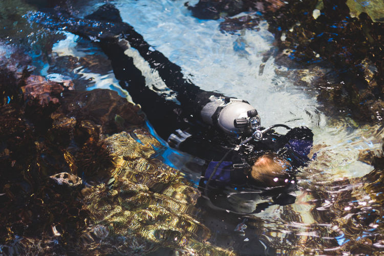 High angle view of person diving in sea