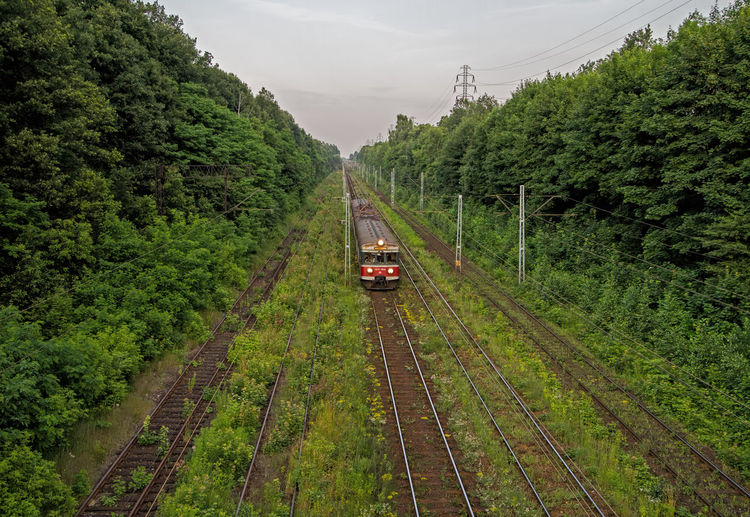High angle view of train on railroad track amidst trees