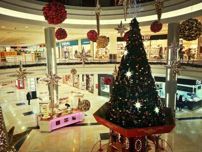 NewYear Cristmastree Mall