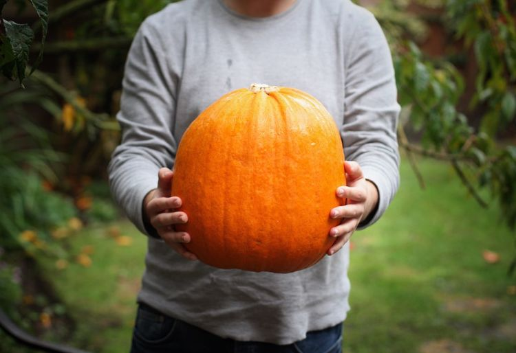 Close-up of man holding pumpkin while standing during autumn