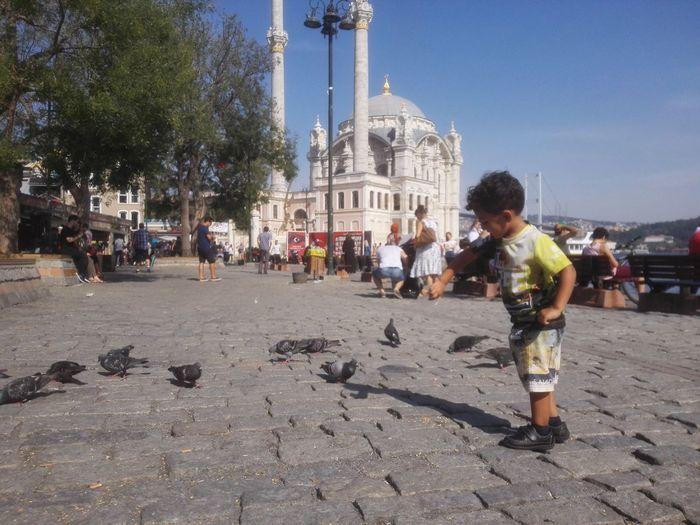 Ortaköy Istanbul Turkey Nofilter No Filter Mosque Cami Ortaköy Mosque