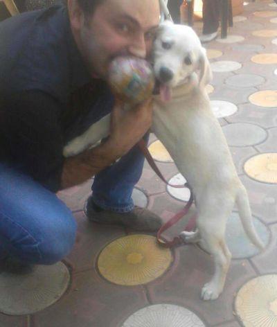 Playdog Withdog I Love Dogs Turkey Kik Me :) Hello World ıstanbul, Turkey Hi! That's Me Higirls Handsome Man Kikmegirls Handsome.... :) Handsome Doglover ı Love Animals Iloveanimals Kik Me Im Bored