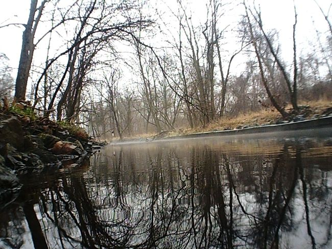 Water Reflections Exploring A Walk In The Park Fog Over Water Nature Light And Shadow Taking A Trip Scenery EyeEm Nature Lover Stunning_shots