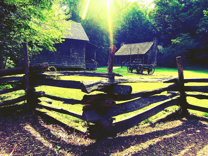 43 Golden Moments Golden Sunrays Old House Golden Days Country Life Rustic Style Rustic Outdoors Old Buildings Old-fashioned Country Living Buildings & Sky Charming Houses Houses In The Forest Houses In The Nature Wooden Fence Wooden Houses Outside Nature No People Tranquility Countryside Tranquil Scene Green Color Earthy Tone Cabin In The Woods