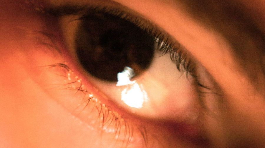 Cinematic Close-up Eyeball Eyelash Eyesight Human Body Part Human Eye People Studio Shot