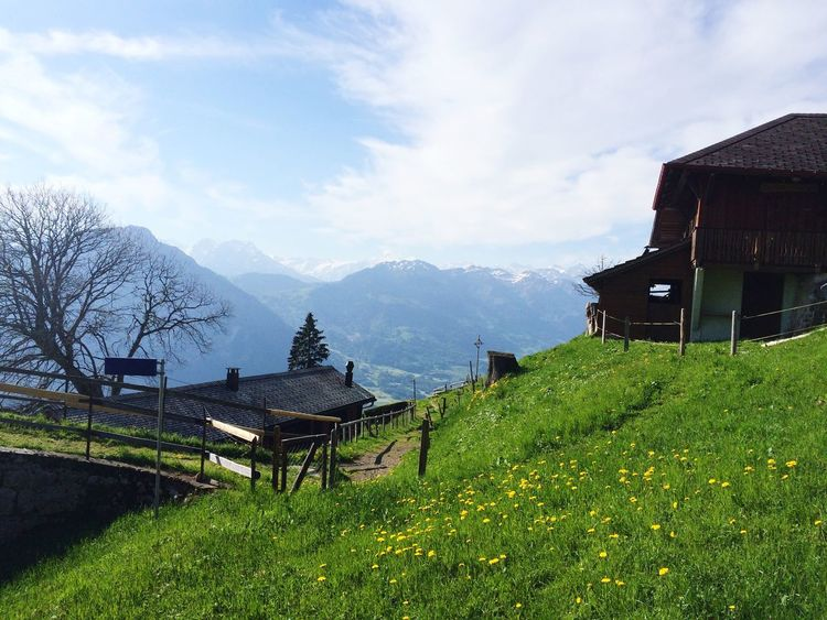 Grass House Landscape Sky Mountain Scenics Mountain Range Switzerland Pilatus Tranquility Beauty In Nature Nature Day EyeEm Best Shots EyeEm Gallery