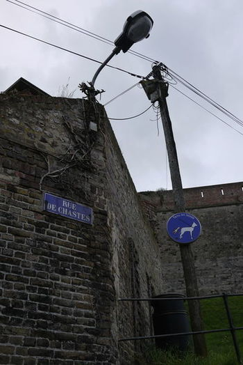 Dieppe Dog Sign France Low Angle View No People Outdoors Sky Telephone Line Telephone Pole