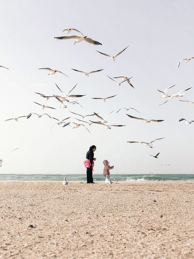 A breath of fresh air before going back to work Dubai Sea Beach Real People Sand Flying Water Togetherness Horizon Over Water Nature Bird Beauty In Nature Flock Of Birds Weekend Activities The Great Outdoors - 2018 EyeEm Awards
