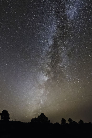 Canary Islands La Palma Island La Palma, Canarias Astronomy Beauty In Nature Constellation Galaxy La Palma Low Angle View Milky Way Nature Night No People Outdoors Scenics Silhouette Sky Space Star - Space Tranquility Tree