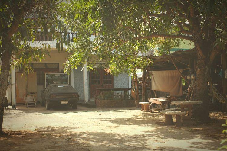 Jard thailand Thailand City Udon Thani
