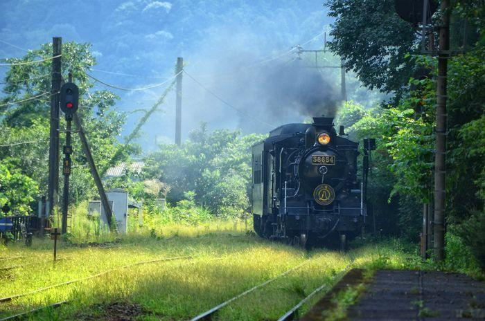 ノスタルジーを求めて… Railroad Track Steam Train Rail Transportation Transportation Locomotive Steam Locomotive 蒸気機関車 SL人吉 JR九州 肥薩線 SL Kumamoto 熊本 D5100 白石駅 Nostalgia Nostalgie Nostalgic