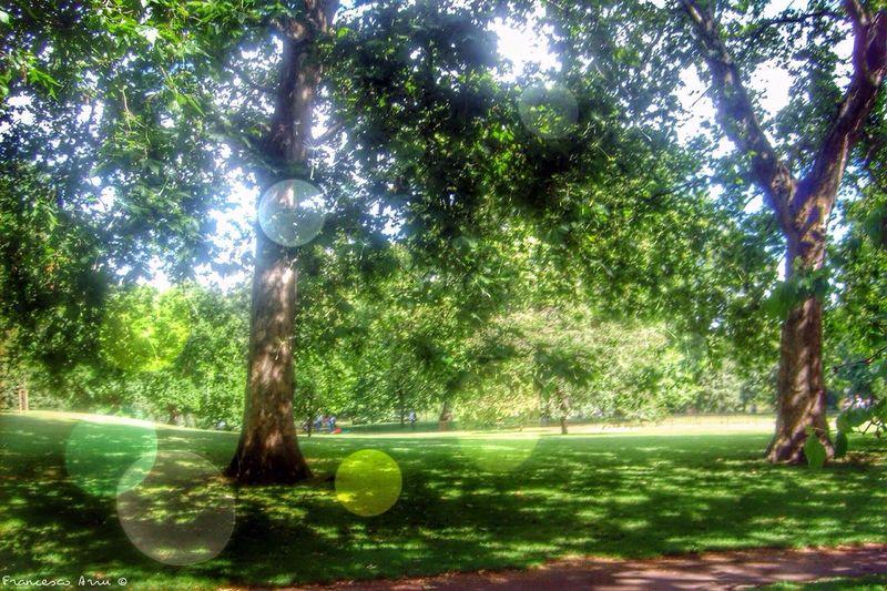 Green peace.