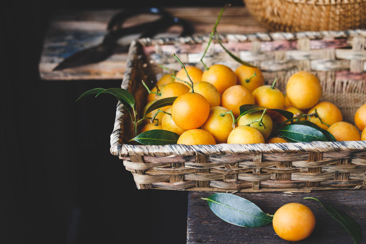 High angle view of plums in basket with scissors on table