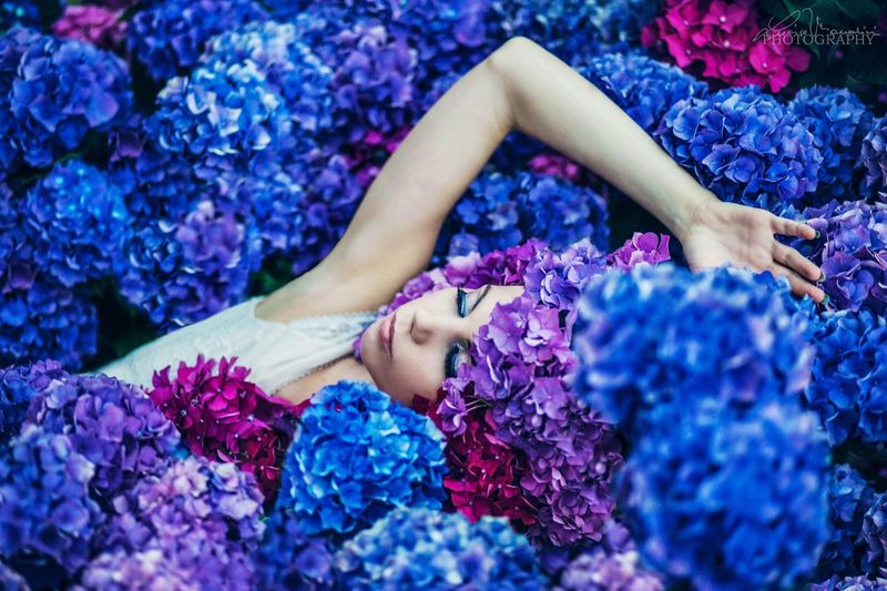 Muse: Valentina Flower Blue Women Beautiful Woman Color Portrait Nature Beauty Real People Hydrangea Girl