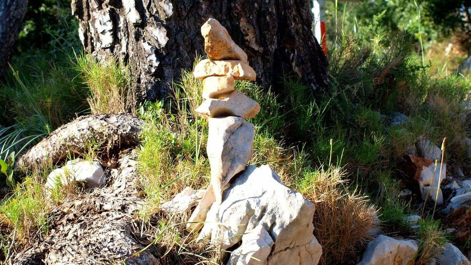 Human Representation Sculpture Statue Art And Craft Male Likeness Tree Religion No People Day Growth Spirituality Nature Outdoors Close-up Stonebalacing EyeEmNewHere Fragility Le Var
