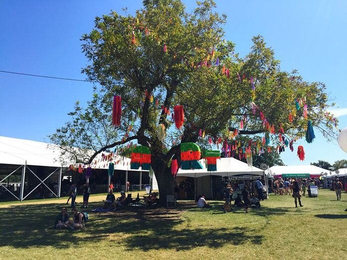 Art Colors Nature Outdoors Festival