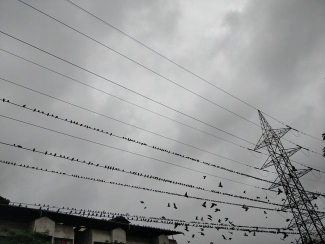 Architecture Built Structure Cable Cloud - Sky Complexity Connection Day Electricity  Electricity Pylon Fuel And Power Generation Low Angle View Metal Mode Of Transportation Nature No People Outdoors Power Line  Power Supply Sky Technology Telephone Line