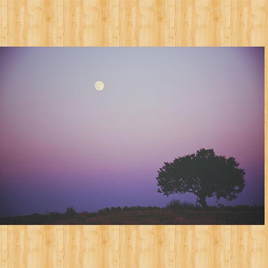 Lüleburgaz Kirklareli Ayvalı Dolunay Moon Relaxing Nikon D7100 Travel Yanlizlik Trakya