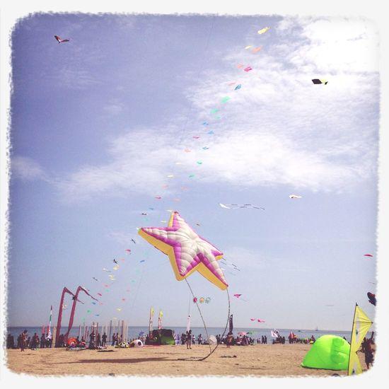 Beach Enjoying Life Kite
