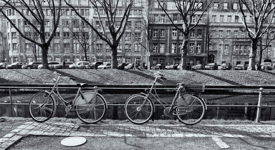 DUESSELDORF, GERMANY - MARCH 13, 2017: Two colorful bycicles lean on a handrail at Koenigsallee and reflect the spring sun. B&w Dramatic Lighting Bicycle Architecture Building Exterior Transportation City Built Structure Mode Of Transportation Land Vehicle Tree Bare Tree Stationary Building No People Day Plant Outdoors Nature Street Parking Footpath Canal Wheel