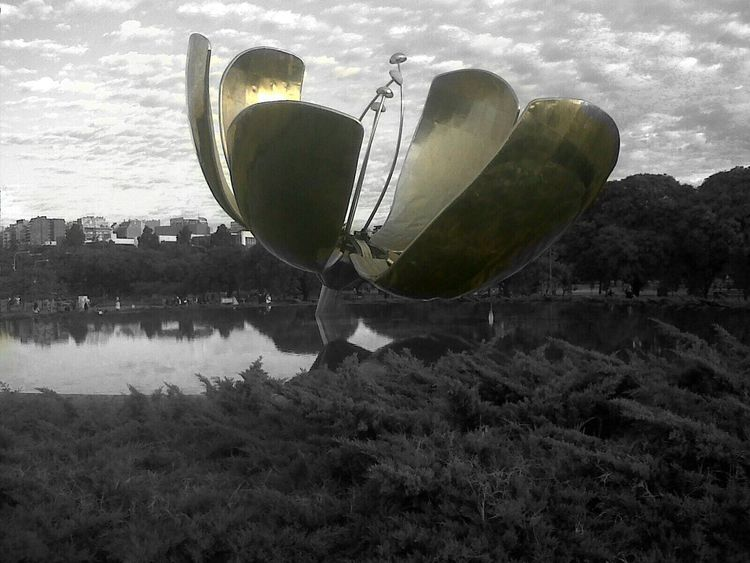 Colorsplash Hanging Out Nature Water Reflections Flower Clouds And Sky by me