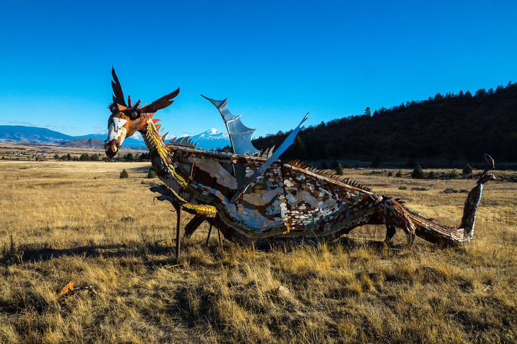Dragon sculpture on field against sky