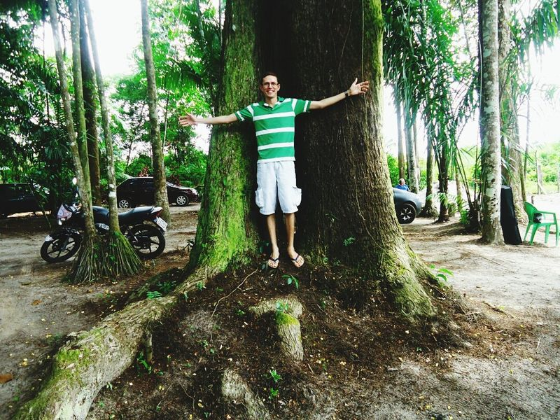 Trees Green Green Green!  Amazonia
