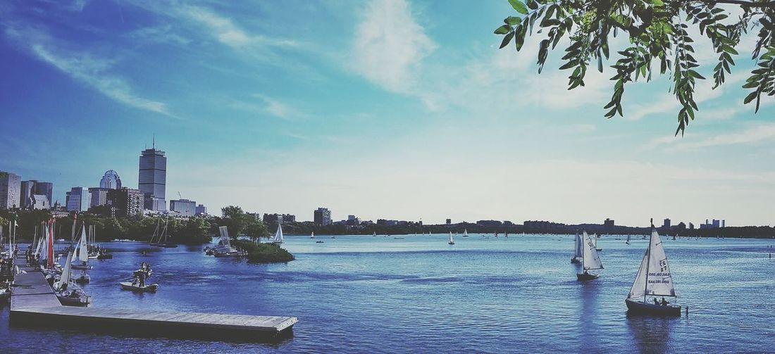 Sailboats River Boston Charles River Sundown Calmovita Photo
