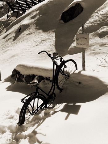 Shadow Bicycle Sunlight Day Outdoors Sand Stationary Snow Land Vehicle Nature No People Beach Cold Temperature