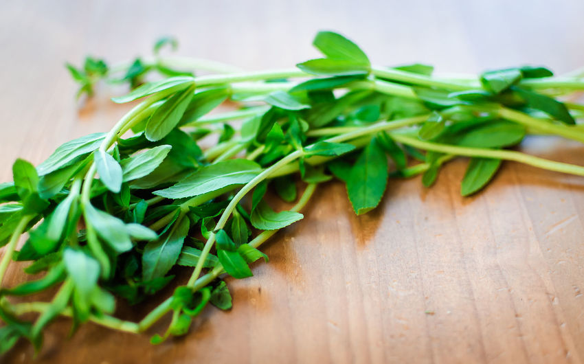 Close-up Food Food And Drink Freshness Green Color Healthy Eating Herb Indoors  Leaf Limnophila Aromatica Ngo Om No People Rau Om Rice Paddy Herb Table Vietnamese Herb