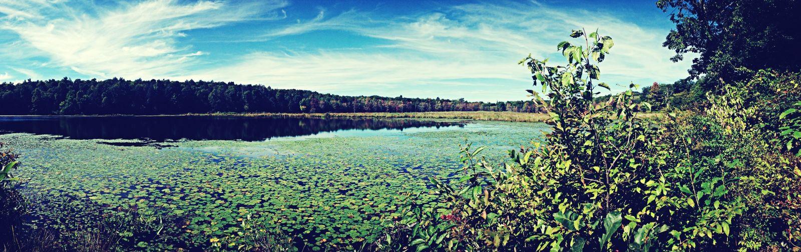 Nature Beautiful Landscape Earth