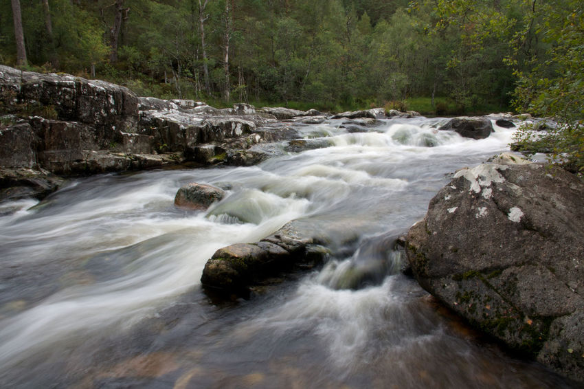 Scotland, Dog Falls Glen Affric Beauty In Nature Blurred Motion Day Dog Falls Flowing Flowing Water Forest Land Long Exposure Motion Nature No People Outdoors Power In Nature River Rock Rock - Object Scenics - Nature Solid Stream - Flowing Water Tree Water Waterfall