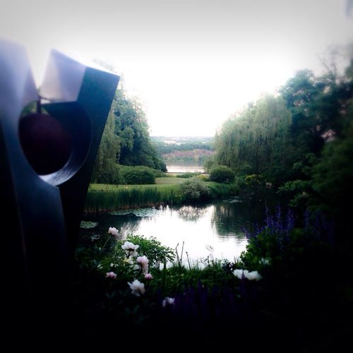 Relaxing Gothams_ambassador Landscape Summer2014
