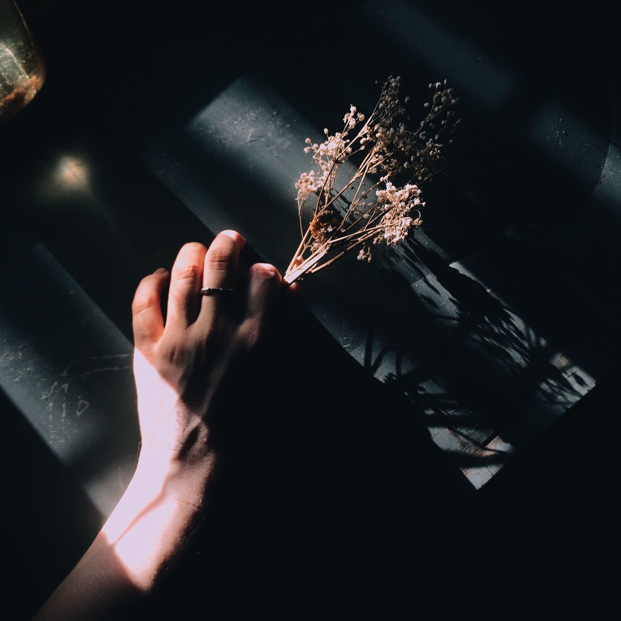Cropped Image Of Woman Holding Flowers