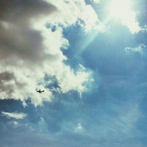 Flying Away ...