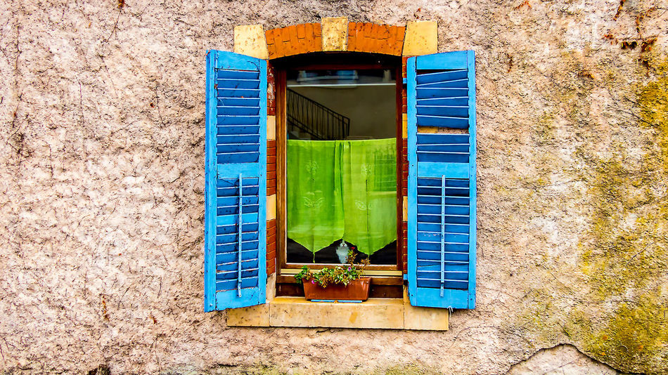 Window with curious cat, Lac de Madine Architecture Building Exterior Built Structure Cat Colorful Curious Curtain Day France Green Color Moss No People Outdoors Pet Reflection Wall Window Window Glass Window Sill