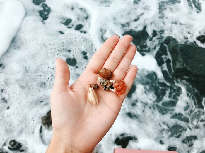 Ocean Shell Human Body Part Hand Human Hand One Person Body Part Personal Perspective Nature Human Finger Finger Day Holding Sea Cold Temperature Land Unrecognizable Person High Angle View Real People Outdoors Marine