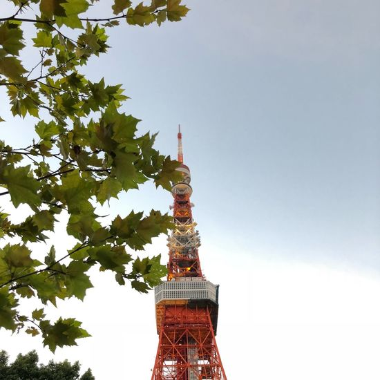 3.40pm Sky Architecture Built Structure Tree Building Exterior Tower Plant
