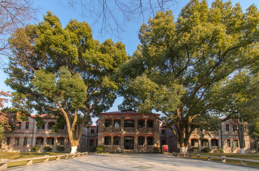 Soochow University Tree Architecture Built Structure No People Building Exterior Day Outdoors Sky