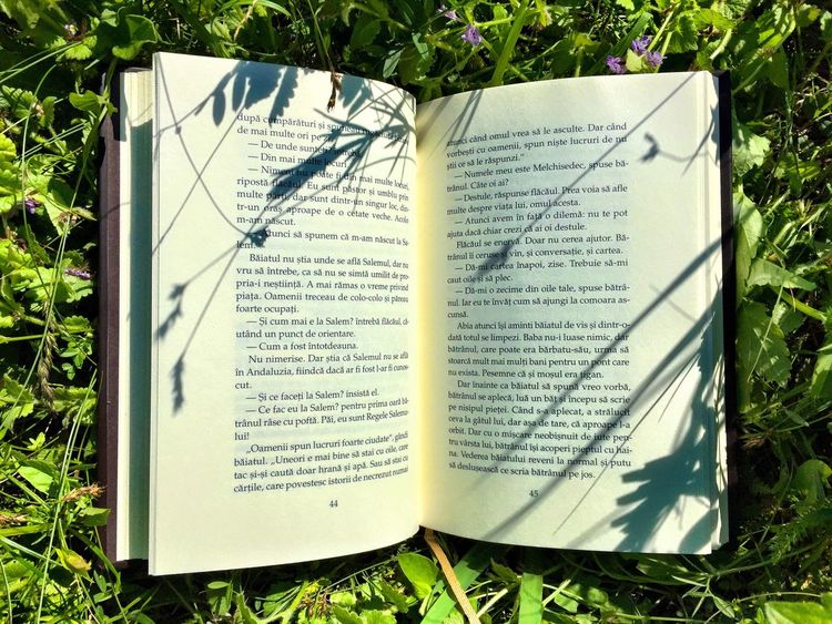 Book Brook & Nature Nature Grass Reading A Book Reading & Relaxing Reading Books Reading In Nature The Alchemist The Great Outdoors With Adobe Shadow Plant Shadow Brook Shadow The Great Outdoors - 2018 EyeEm Awards