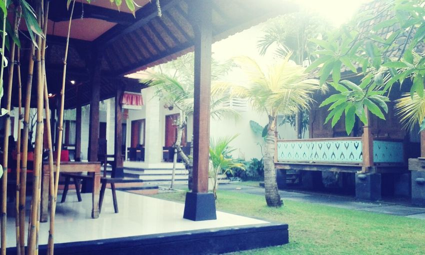 Guesthouse Relaxing Holiday Photos Around You at bali jepun guest houst just 35$/day