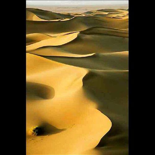 اینم نتیجه دوام اوردن توی طوفان شن . ریگا - بافق - استان یزد - ایران . After the sandblast. Riga - Bafgh - Yazd - Iran