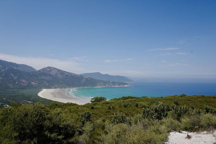 Shot at Wilsons Promontory, Gippsland. Beach Beauty In Nature Blue Day Grass Horizon Over Water Landscape Nature No People Outdoors Scenics Sea Sky Tranquil Scene Tranquility Tree Water