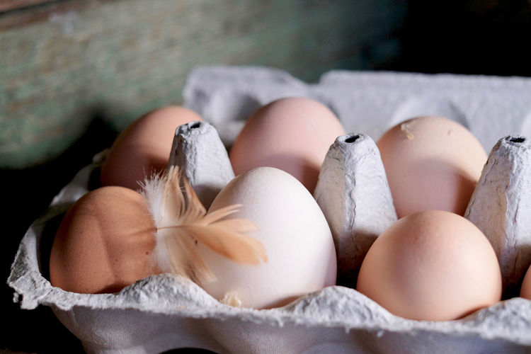 Fresh eggs from